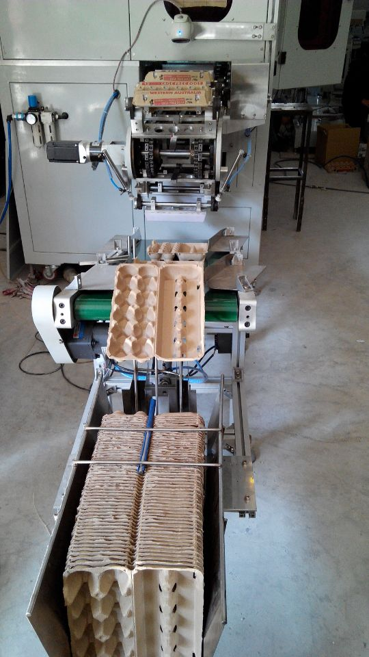 Automatic 6 Colors Egg Trays Pad Printing Machine
